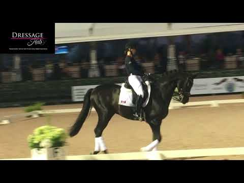 Carl Hester Masterclass: The Flying Change in Dressage
