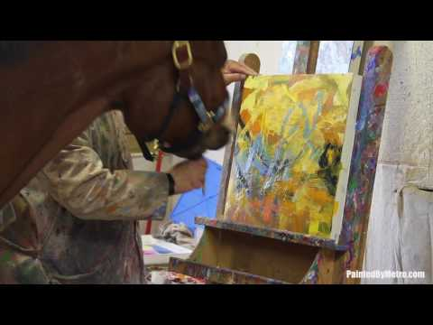 How to Paint Abstracts with a horse?