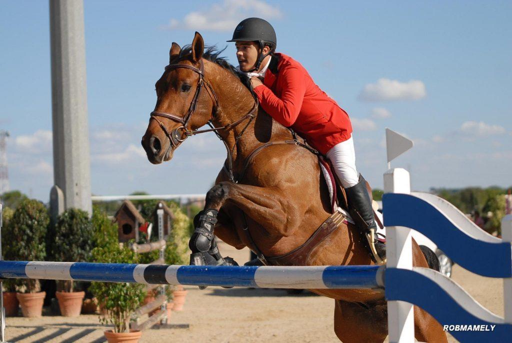 Salto de Obstáculos. Modalidades de la Equitación