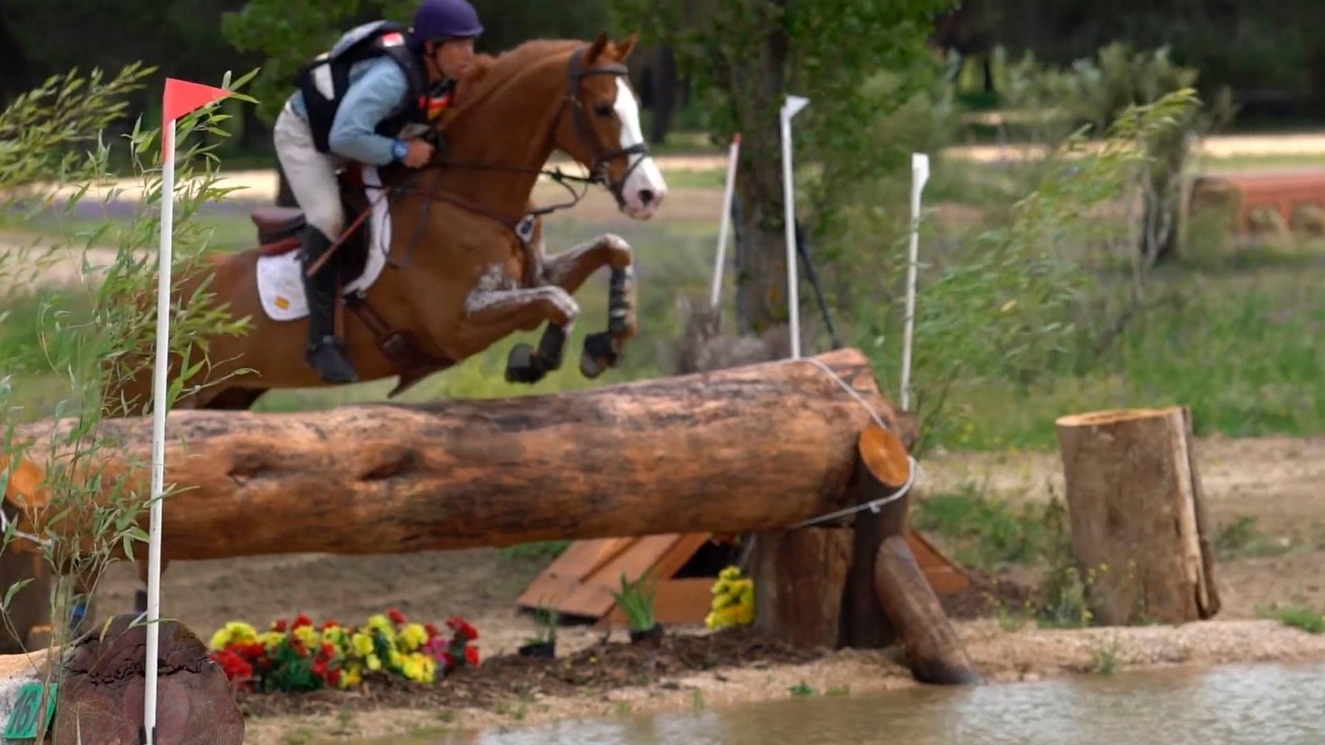 Concurso Completo de Equitación