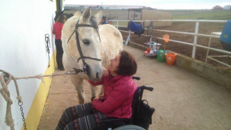 caballo como coterapeuta