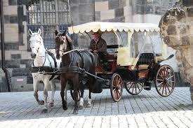 Caballo como transporte