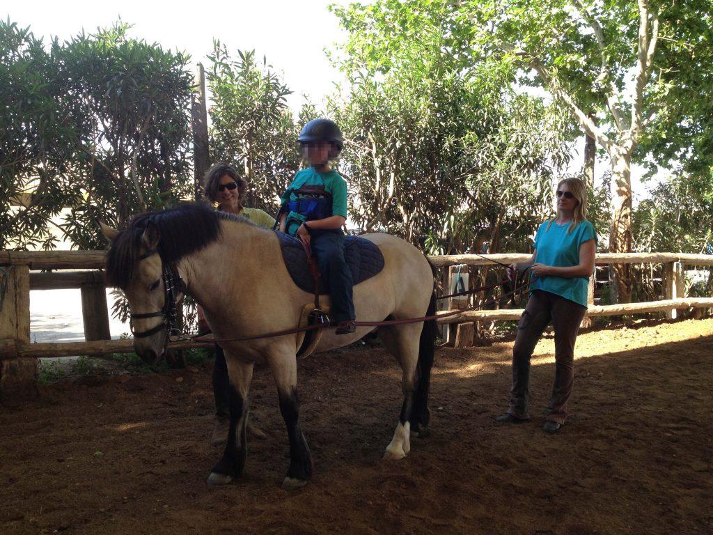 caballo de Terapia