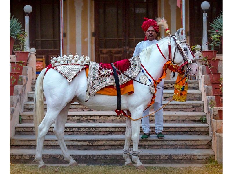 caballo en la cultura hindú