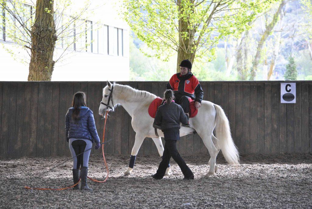 Entrenamiento caballo de terapia