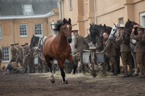 cine -caballo