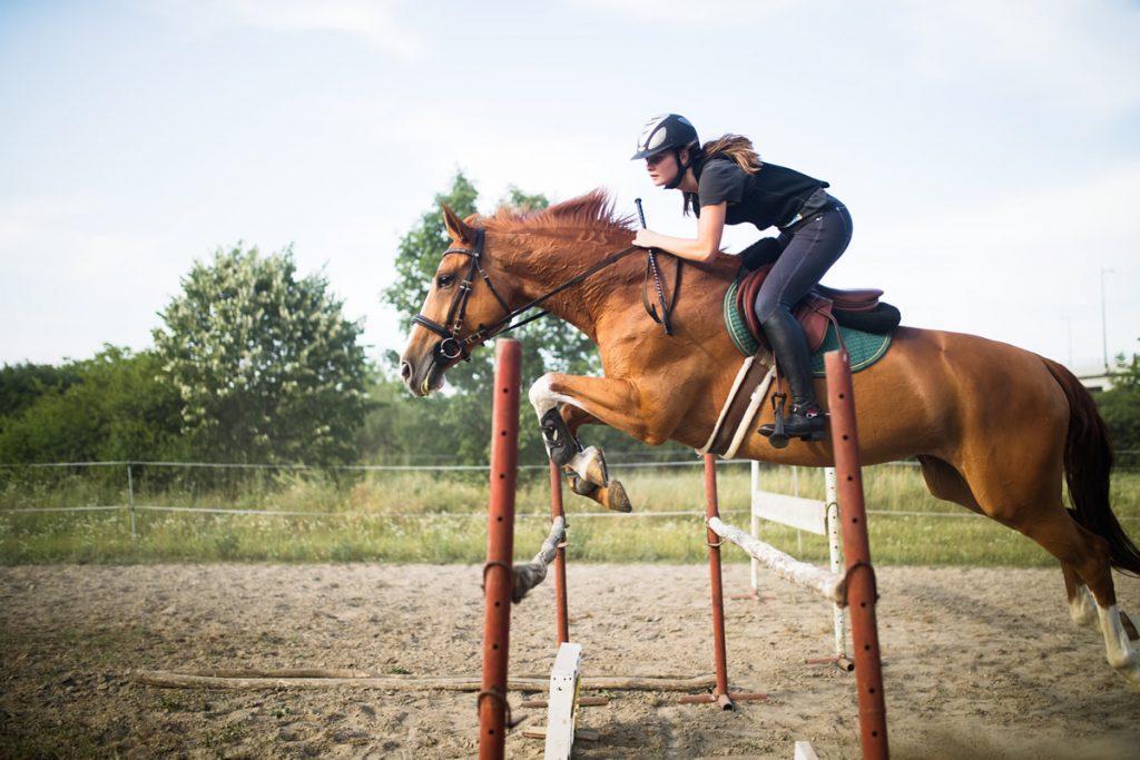 Equitacion-Gonzalo de Saavedra y Cueto