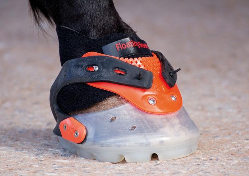 Botas para caballos
