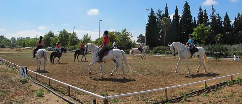 equitacion-centrada