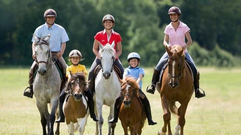 Entrenamiento para equitación