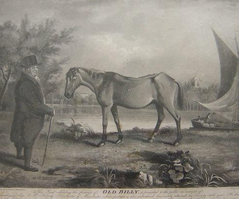 Billy de Lancashire el caballo más longevo de la historia -