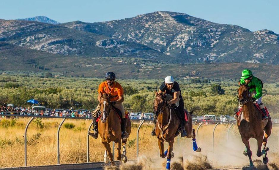 Carrera de caballos de La Senía