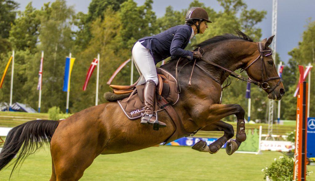 bondades de la equitación