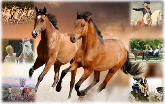 El caballo a través de la historia