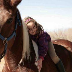 La equitación etológica es un método