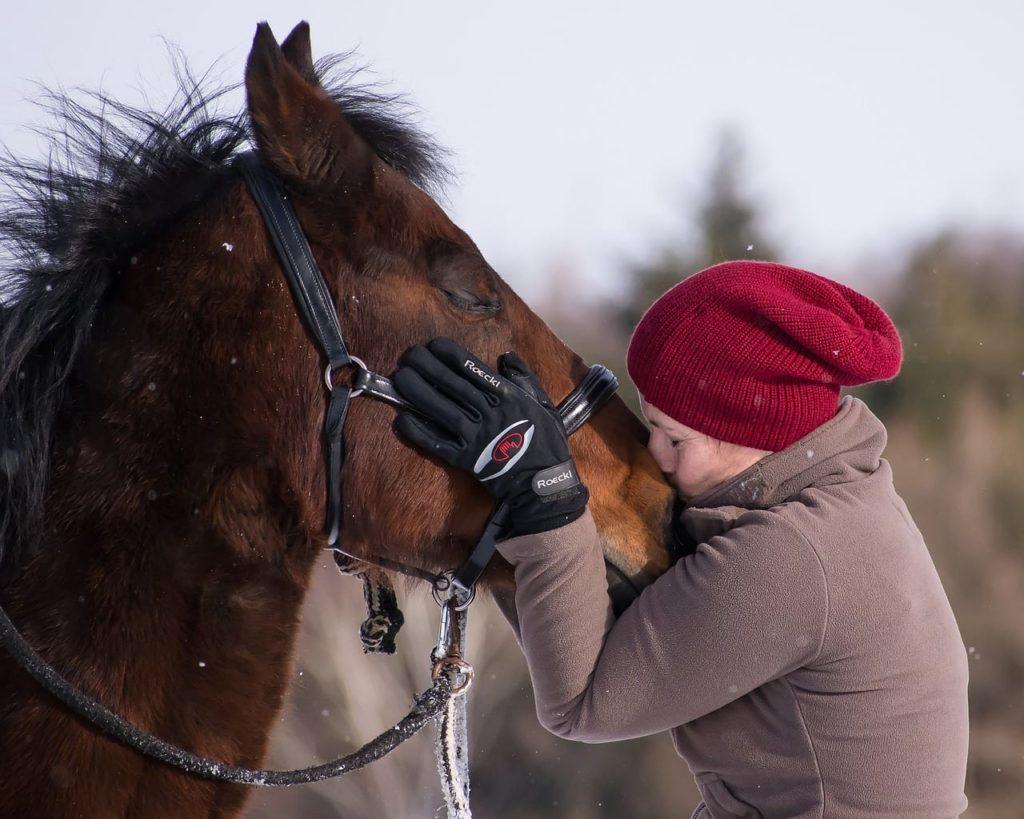 claves para saber si tu caballo te quiere