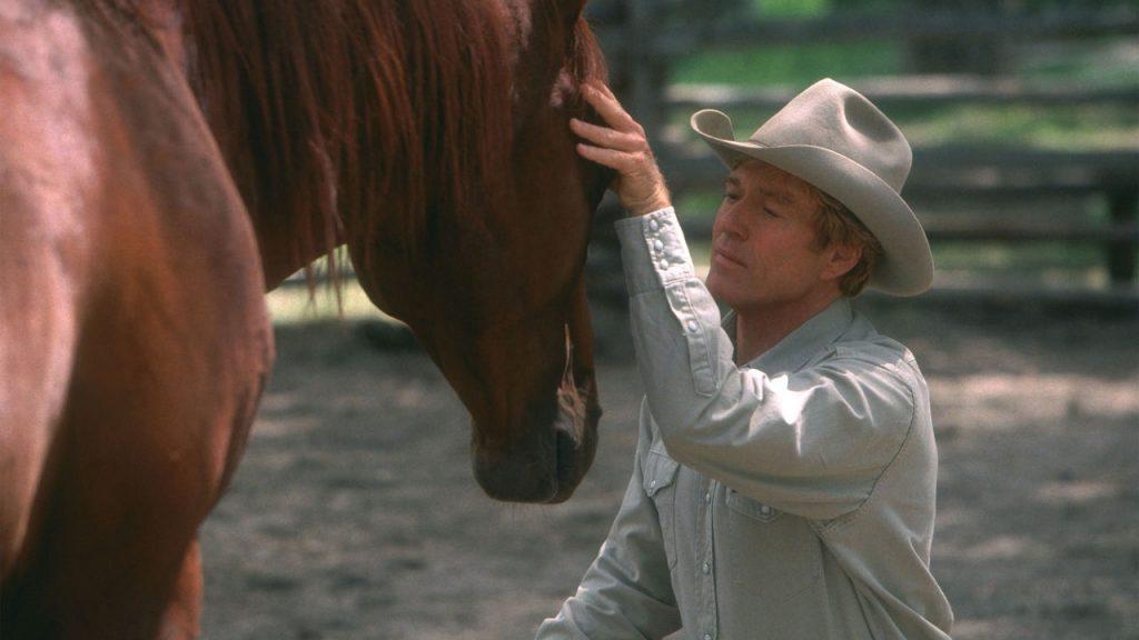 el caballo y su relación con el hombre