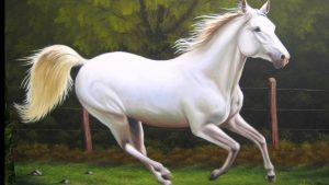 el carácter del caballo