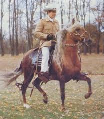 Andar del caballo