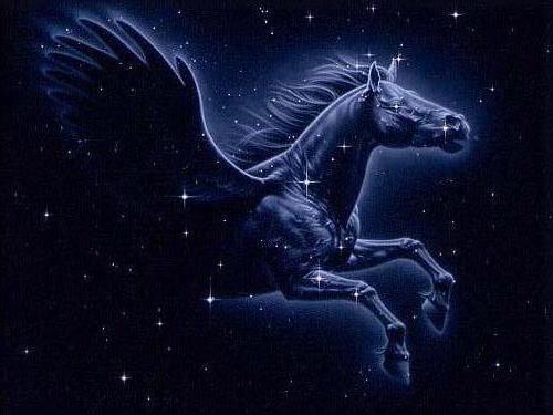Constelación Pegaso