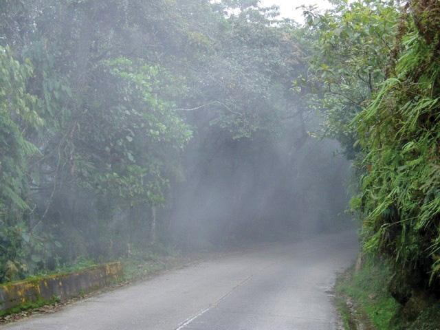 Aragua Fauna Equina