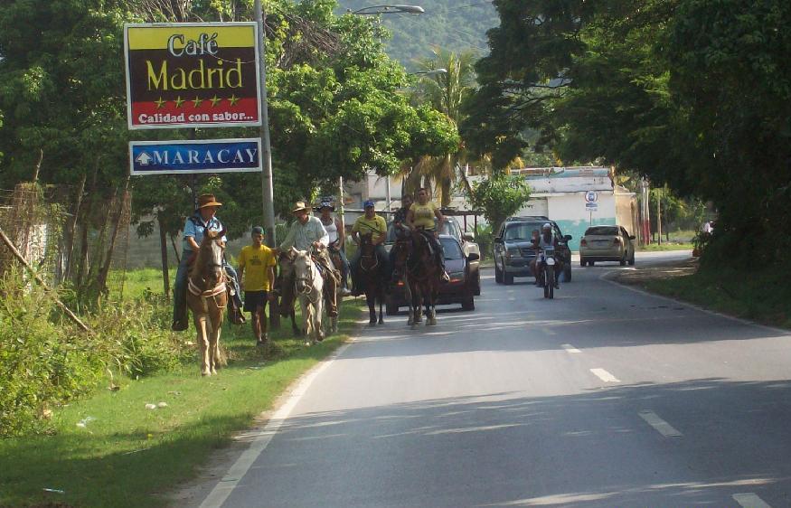 Caballos por el camino