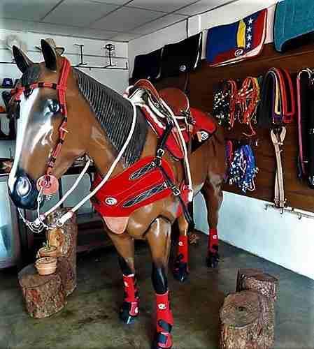 Tienda para quienes saben de caballos