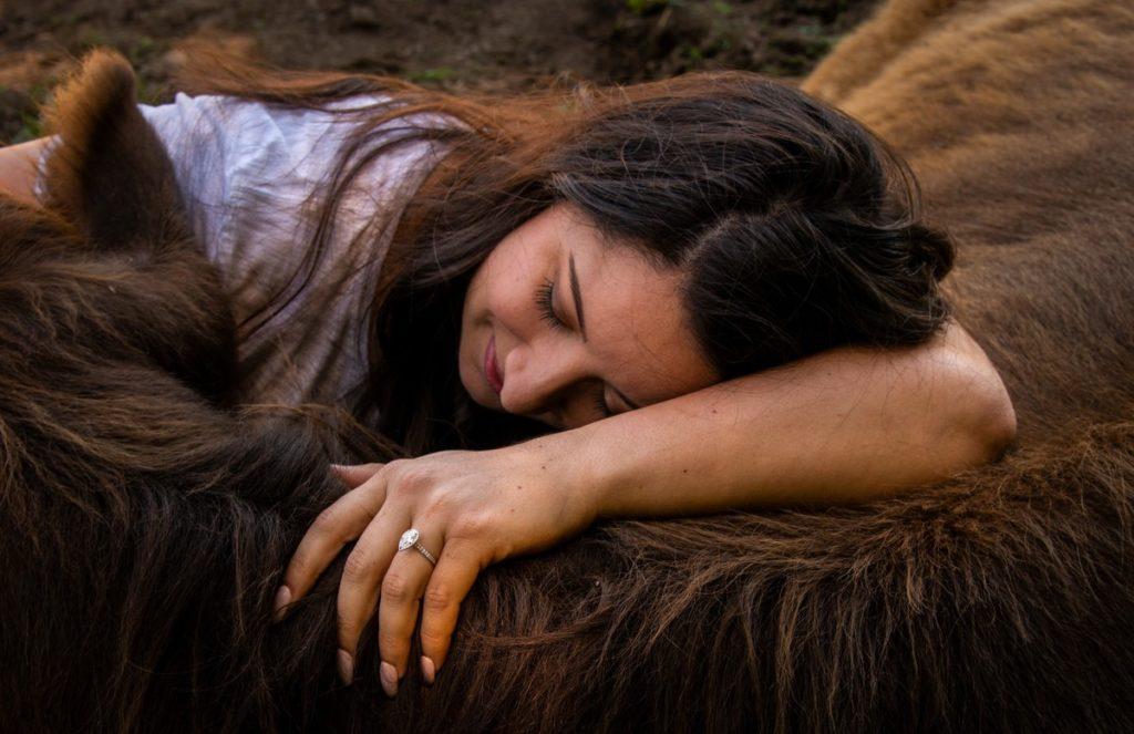 Terapia con vacas