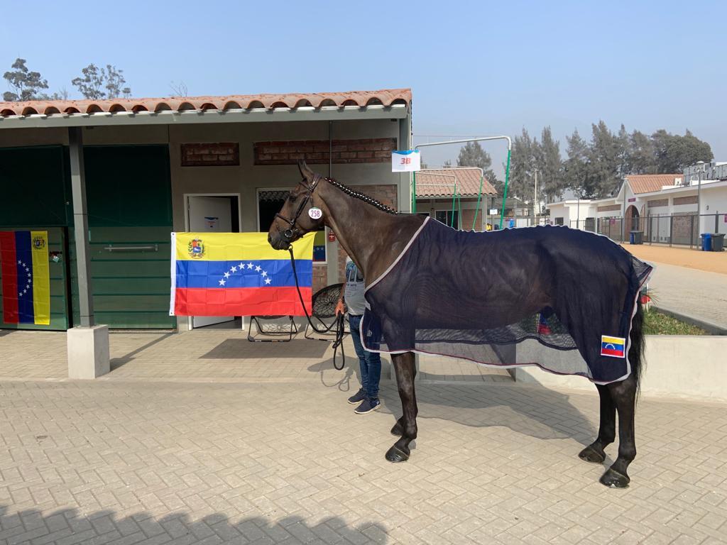 Gustavo Arroyo y Virko Minotais en la cuenta regresiva para saltar en Lima