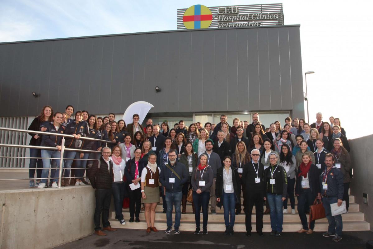 Congreso veterinario en Valencia reúne a expertos de Europa