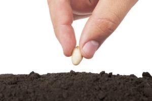 ley de siembra y cosecha