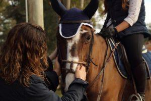 tips para montar un caballo