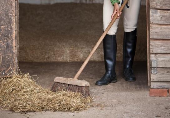 Limpieza de la cuadra – trucos para mantener la higiene en el box