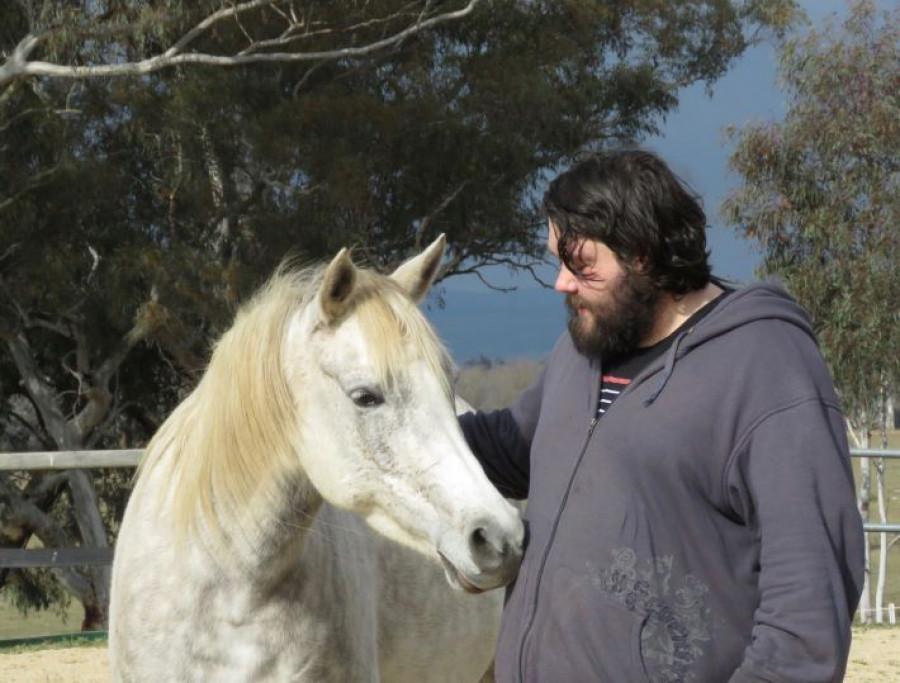 caballos que calman personas