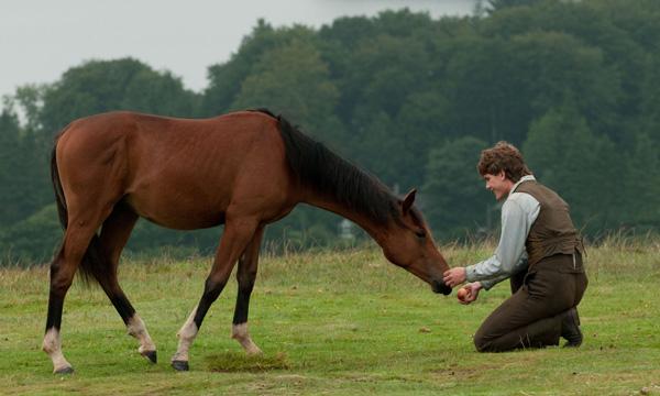 Cómo mejorar la relación con tu caballo