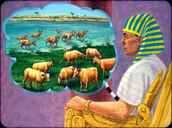 Las vacas gordas y las vacas flacas principios financieros | Gustavo Mirabal
