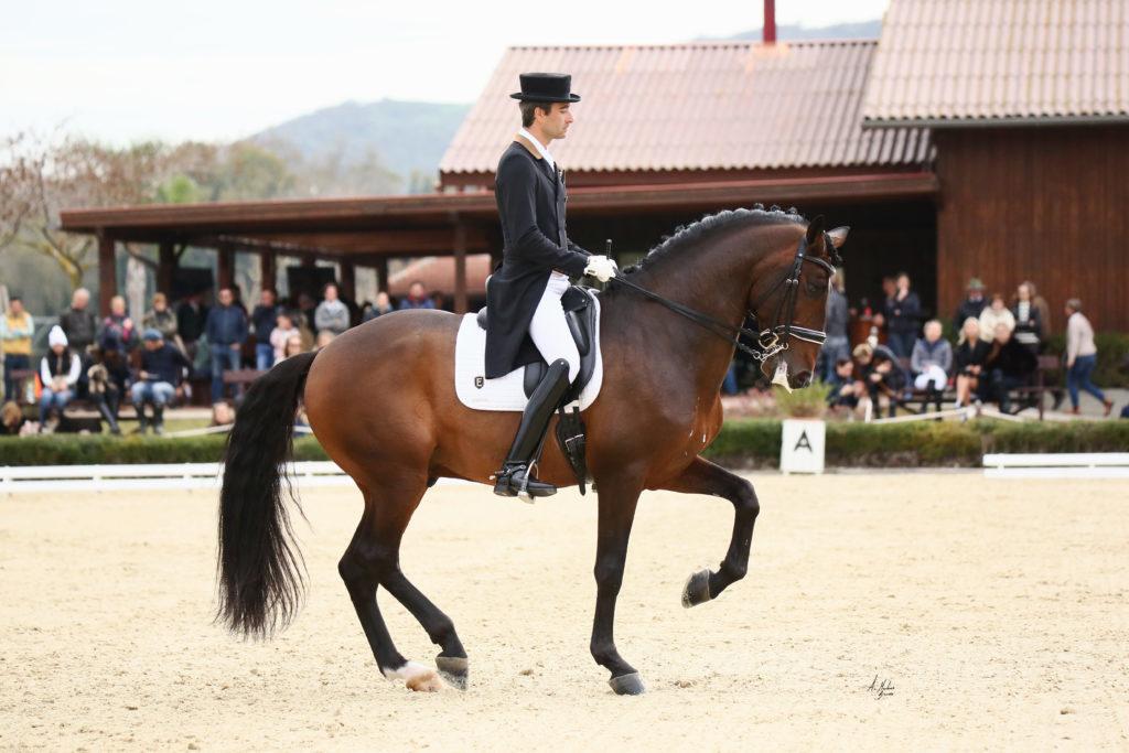 Alejandro Asencio el gran domador de caballos