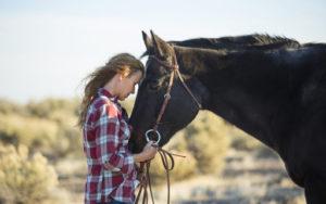 Los caballos y sus emociones