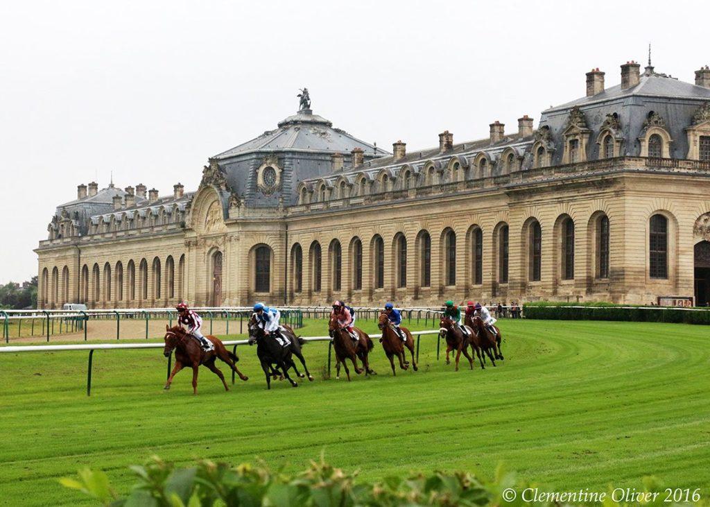 los caballos son prioridad en Francia
