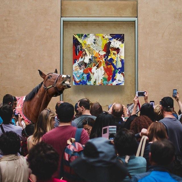 caballos historias y algo más