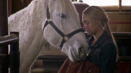 El caballo Pegaso en cuarentena