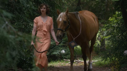 La chica que amaba a los caballos